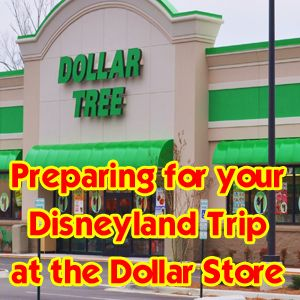 Getting ready for a family vacation to Disney World at the Dollar Tree - let your disney side out!