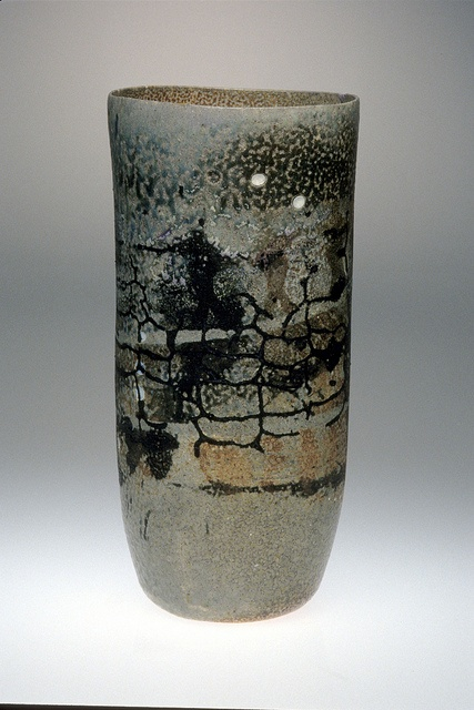55 Best Images About Mitch Lyons On Pinterest Ceramics Videos And Vase