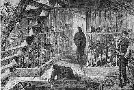convicts in australia essay