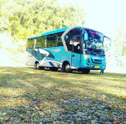 Bus Pariwisata seat 35 Medium Jogja