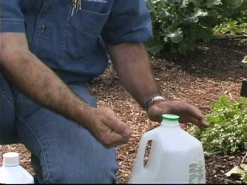 Homemade Irrigator