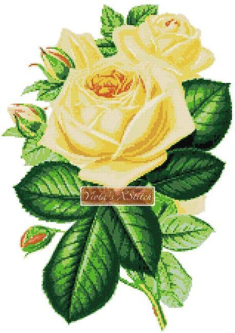 Yellow rose cross stitch kit