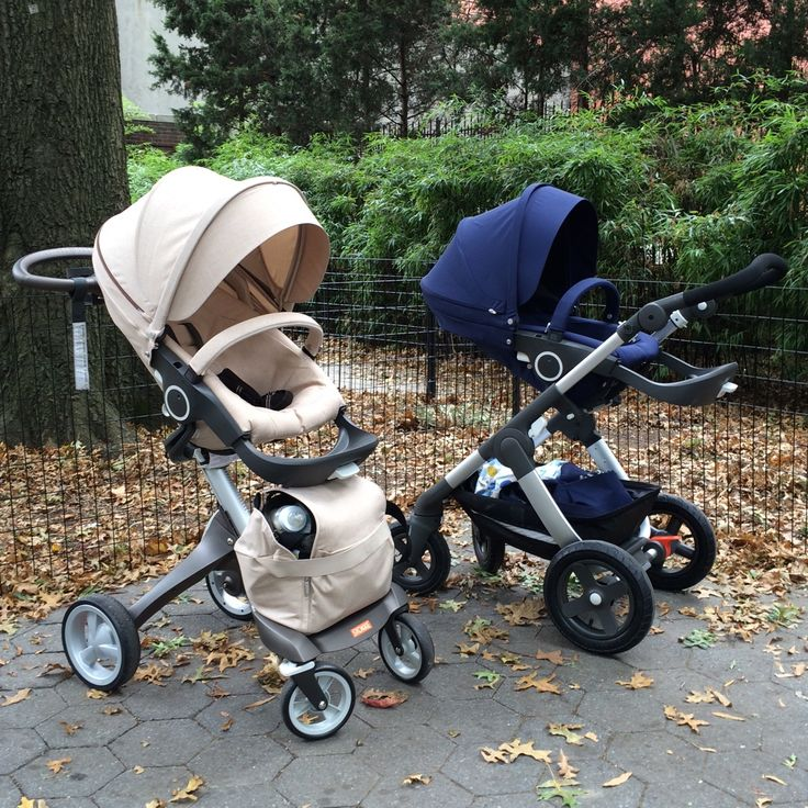 Family resemblance w/ their own unique personalities.... Stokke Xplory and Stokke Trailz Strollers