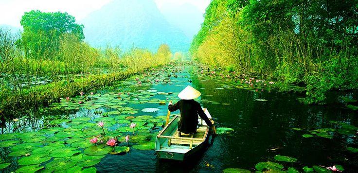 I canali vietnamiti portano alla scoperta di orti rigogliosi, mercati galleggianti e piccole fabbriche come quelle delle caramelle di cocco, alle quali arrivano imbarcazioni riempite fino all'orlo di noci di cocco.