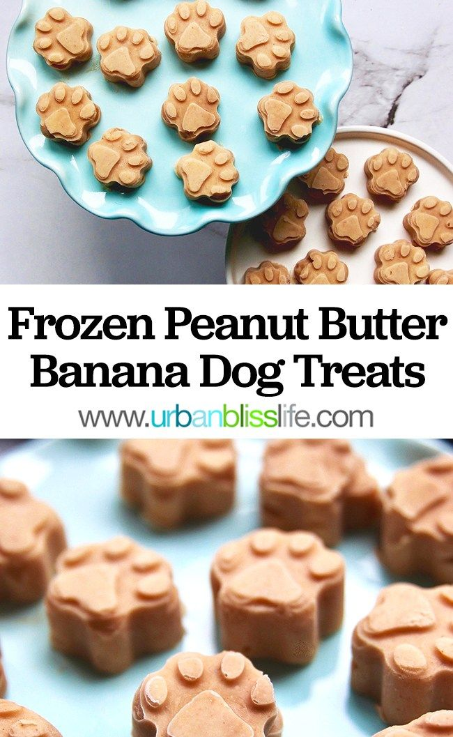 Frozen Peanut Butter Banana Dog Treats Recipe Dog Biscuit