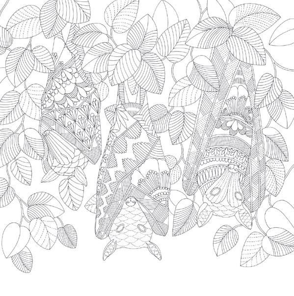 Coloring Pages Colouring Search Tropical Wonderland Animals