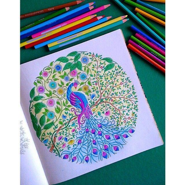 Pavão lindo  Créditos à  @wendiwenda . ✔ Use #jardimdascores nos marque ou envie direct com sua foto  . #secretgarden #secret_garden #secretgardens #secretgardenbook #secretgardencoloringbook #jardimsecreto #jardimcolorido #johannabasford #johanna_basford #jardimsecretotop #jardimsecretoinspire #johannabasfordsecretgarden #basford #colori #colors #colorful #coloring #coloringbook #flowers #FlorestaEncantadaTop #Giotto  #pencildrawing #Regrann