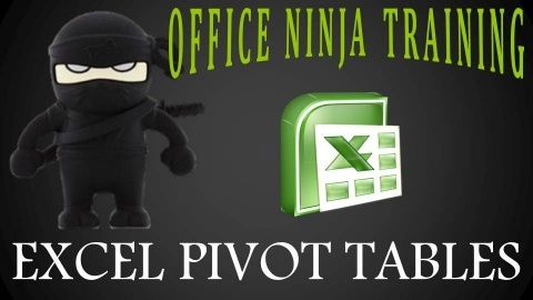 Excel Deep Dive: Pivot Tables Workshop with the Office Ninja - Excel data mastery is possible! Learn the ultimate Excel data analysis tool and learn how to use it to get a raise - $35
