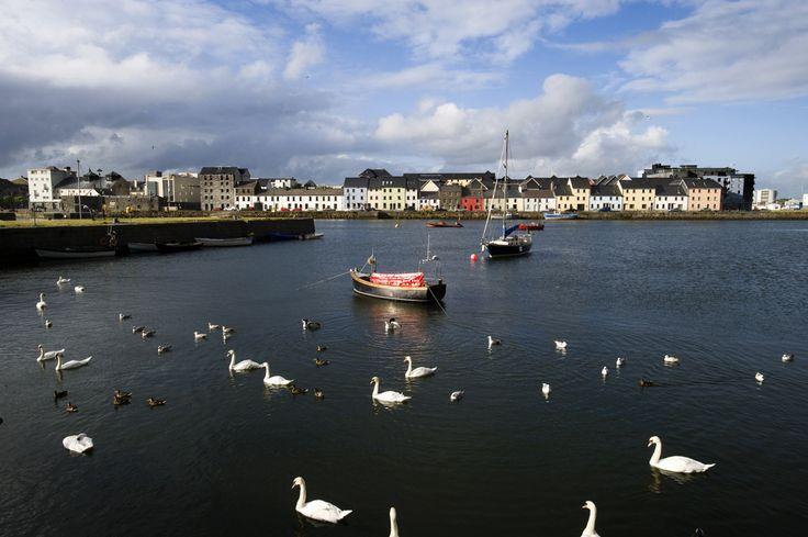 Galway en cottage