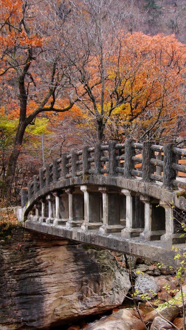 cherjournaldesilmara: Pont dans le magnifique parc national Seoraksan en Corée du Sud