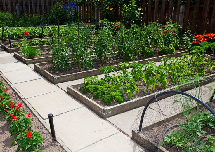 Designing A Vegetable Garden With Raised Beds gardens 10 stunning landscape ideas for a sloped yard 115 Best Raised Garden Beds Images On Pinterest