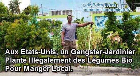 Rob Finley a choisi de faire pousser illégalement des légumes bio partout dans la ville pour retrouver son autonomie alimentaire.  Découvrez l'astuce ici : http://www.comment-economiser.fr/un-gangster-jardinier-plante-illegalement-des-legumes-bio.html?utm_content=buffer26bae&utm_medium=social&utm_source=pinterest.com&utm_campaign=buffer