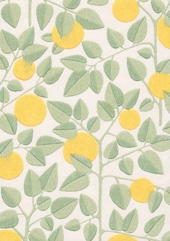 tapettitalo.fi Appelsiini wallpaper