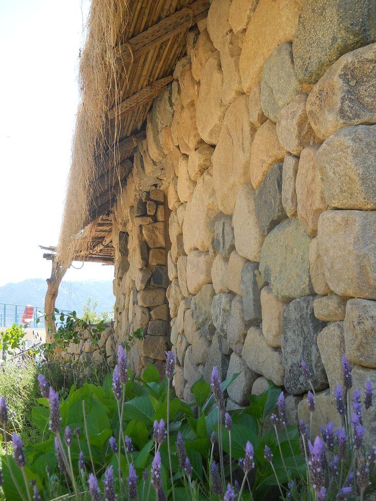 Valle de Colchagua, Chile.