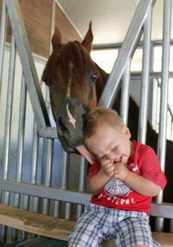 60- I like this picture because it contain a innocence child and a horse the horse play with child and the child feel happy .