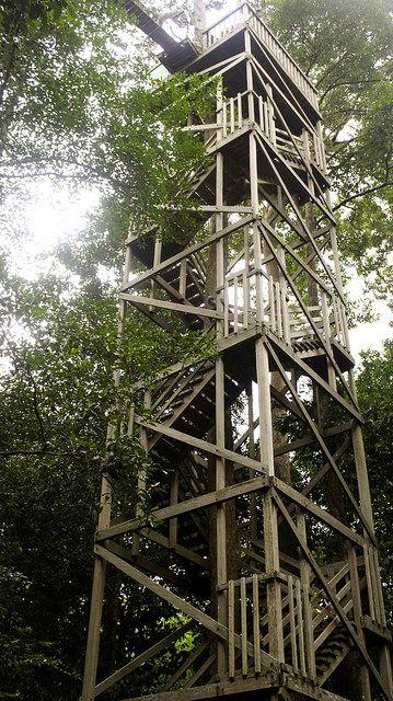 Canopy Bridge - Balikpapan