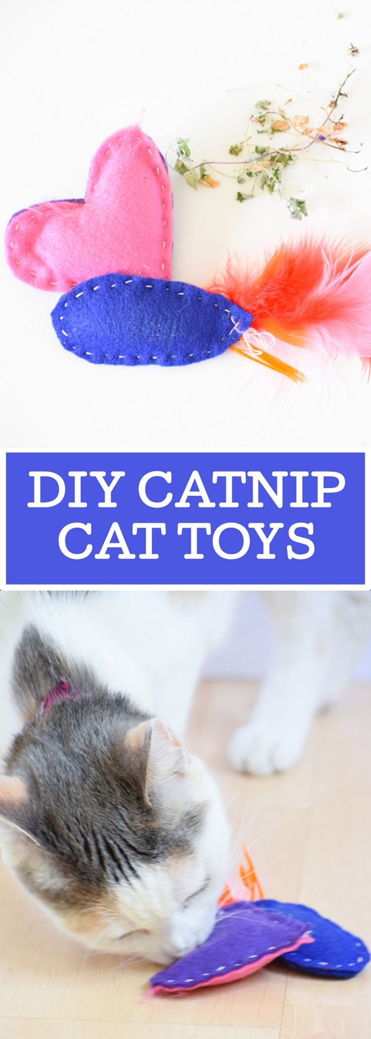 DIY Catnip Cat Toys are easy to make and irresistible for your favorite feline! #ad #catslovenutrish