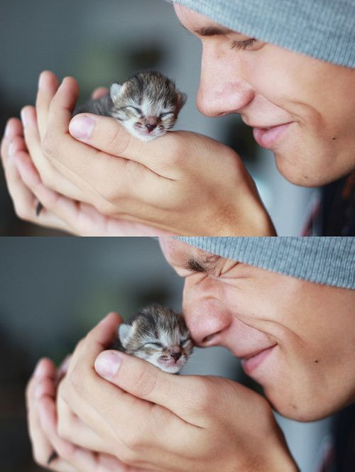 I about pooped myself with giddiness from this picture. This is literally the best thing ever! Cute boy cuddling with kitten...'nough said!