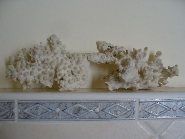 coral in the bathroom