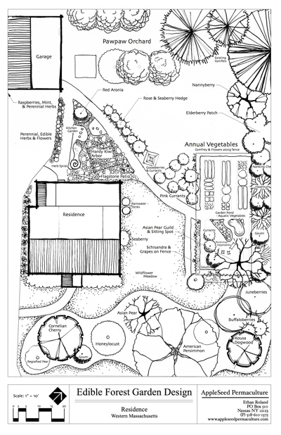 Residential | AppleSeed Permaculture