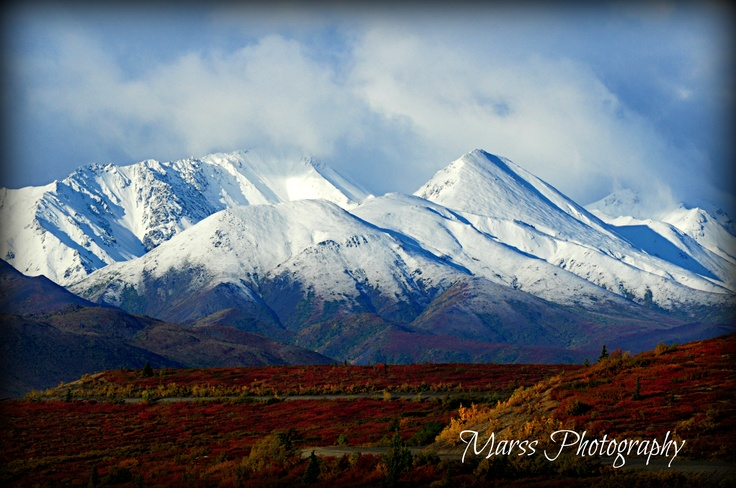 Denali Mountains- By Marissa Blott