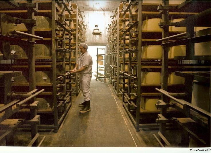 Fiscalini farmstead cheese modesto california premium