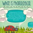 58 pages jam-packed with our favorite Phonological Awareness Activities, each aligned to Kindergarten and First Grade Common Core!   This packet in...