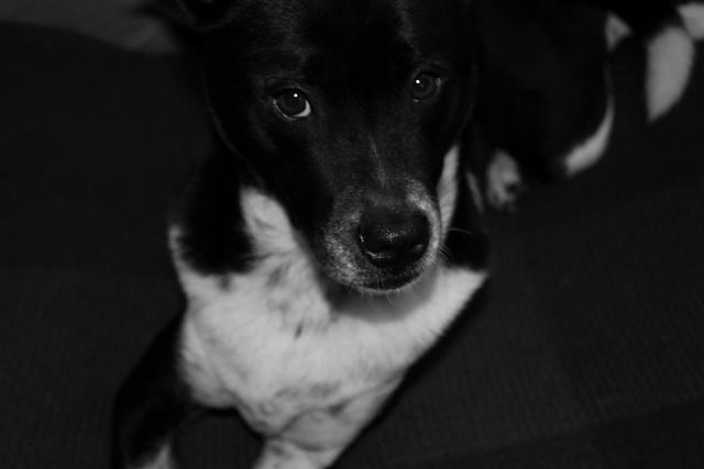 My little Mackenna!: Photo