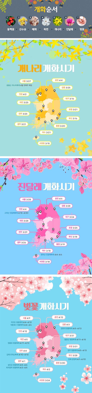 봄꽃 개화시기에 관한 인포그래픽