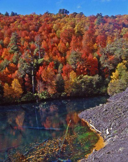 Laguna Arcoiris Parque Nacional Conguillio - Chile