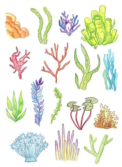 Underwater Plants [Print] - Watercolor Painting Art Illustration Drawing Coral Reef Seaweed Anemone