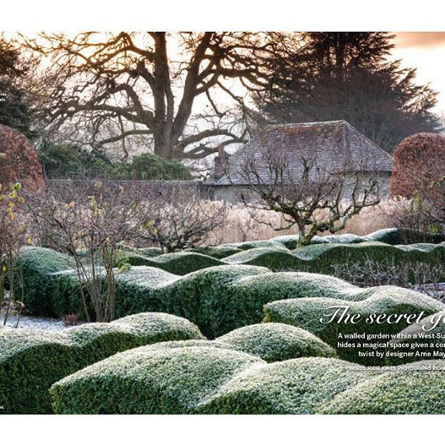 With the promise of a cold snap towards the end of the week, we're hoping for enchanting scenes like this - The @arnemaynardgardendesign garden in West Sussex as seen in the December issue of @gardens_illustrated. Photo by @richardbloomphoto