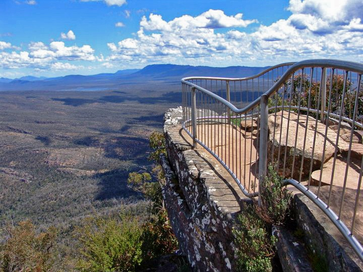 The Pinnacle bush walk has an amazing view from the top. It's only a 2.5 hour round trip!