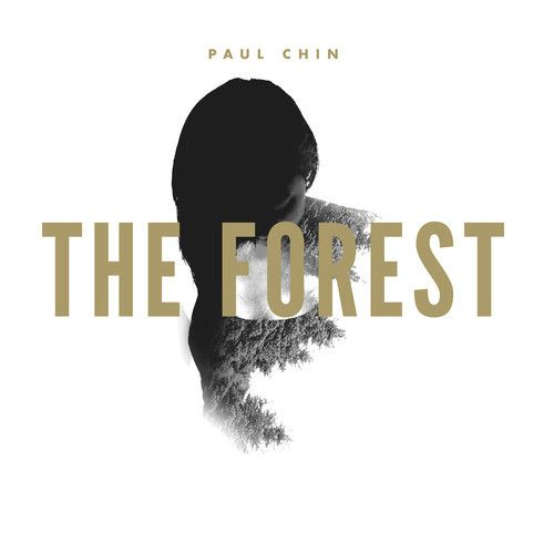 The Forest by Paul Chin on SoundCloud - Hear the world's sounds