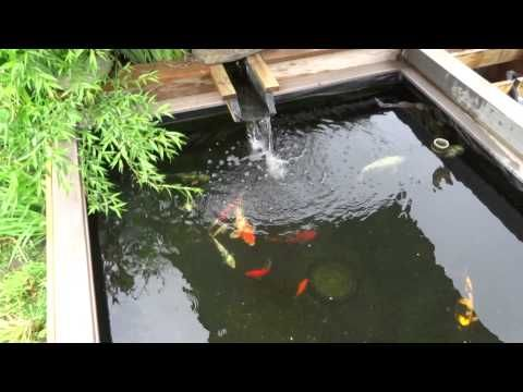 Diy pond waterfall filter build step by step for less for Diy koi pond filter design