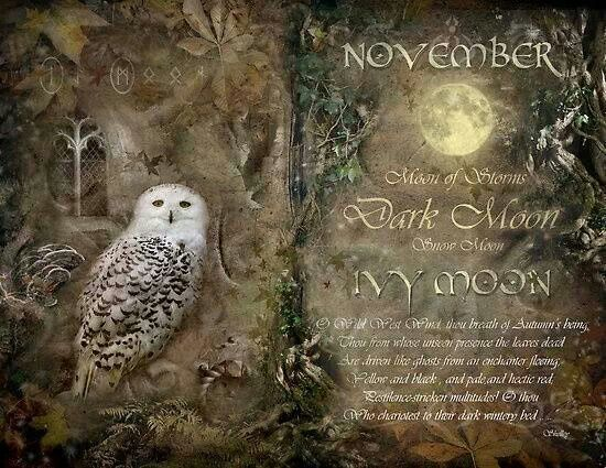 November.  Moon of Artemis,  Dark Moon, Snow Moon , Ivy Moon.