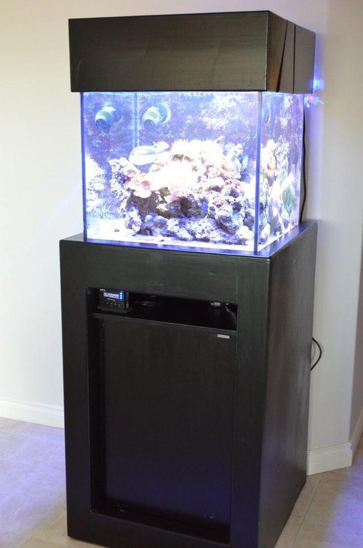 Fish aquarium price in pakistan - There Is A Lot Of Equipment That Goes Into A Reef Aquarium Stand Plan It Out To Make Things Easier For Yourself And Separate Your Sump From The Electronics