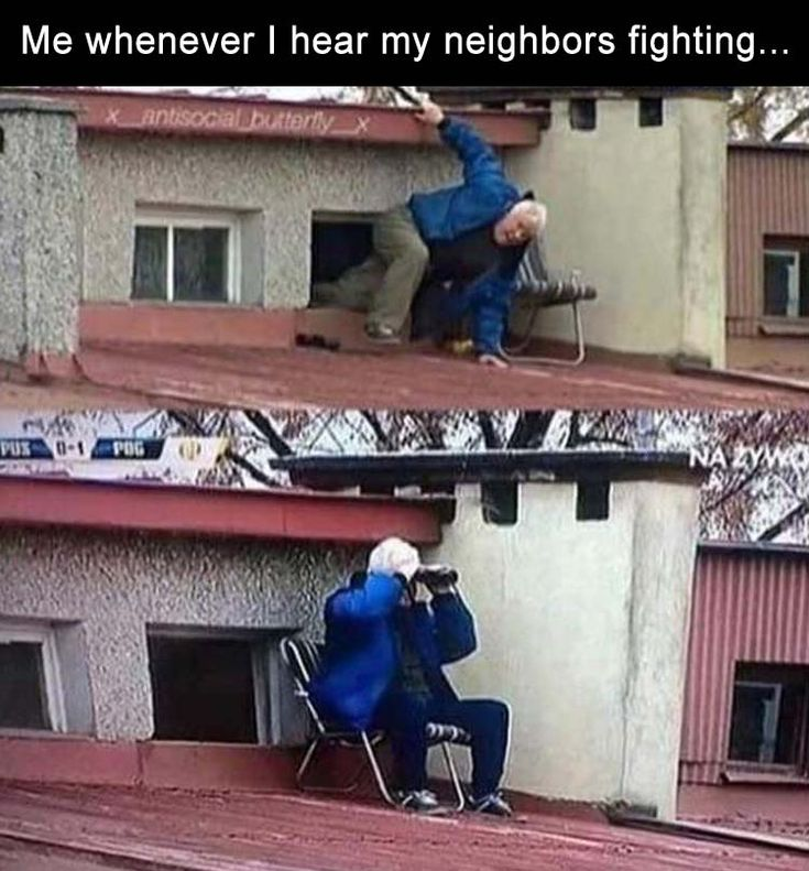 my-neighbors funny pictures with captions pictures funny