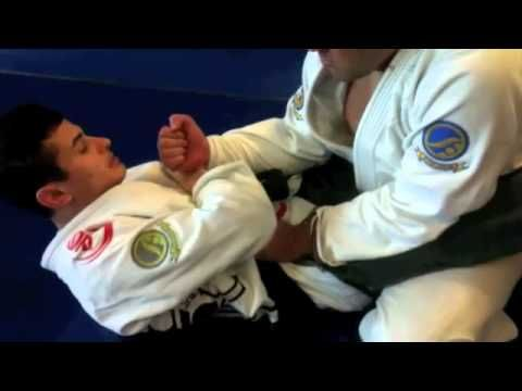 gracie jiu jitsu techniques pdf