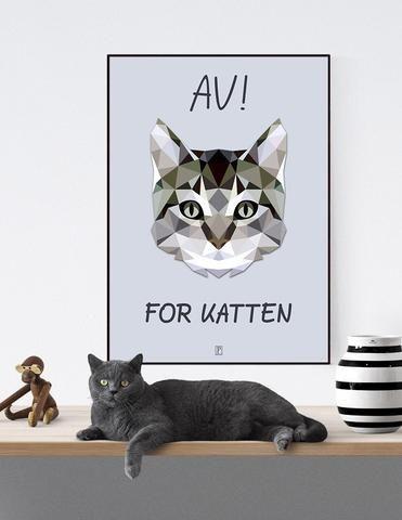 AV! FOR KATTEN