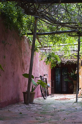 Patio en Ibiza  Spain