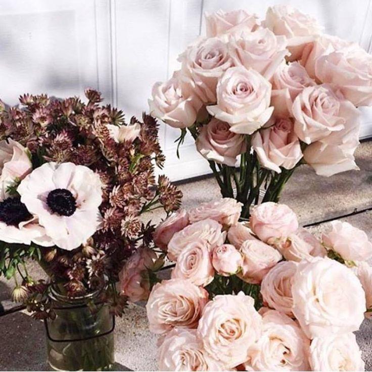 Blush pink tones 🌸
