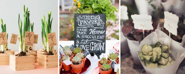 Wedding-Favours---Plants - Read more on One Fab Day: http://onefabday.com/10-fab-wedding-favour-ideas/