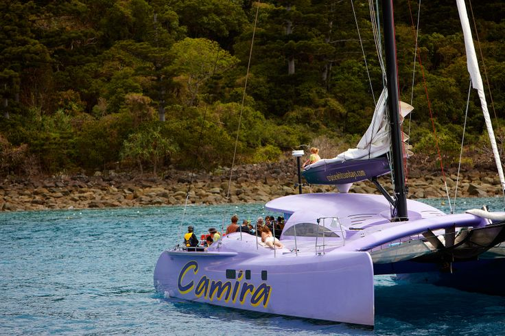 The Camira Sailing Adventure is a Whitsundays Must-Do. Experience it with Cruise Whitsundays & Awesome Whitsundays. #cruisewhitsundays #awesomewhitsundays #camira #sailing #lovethewhitsundays #visitaustralia
