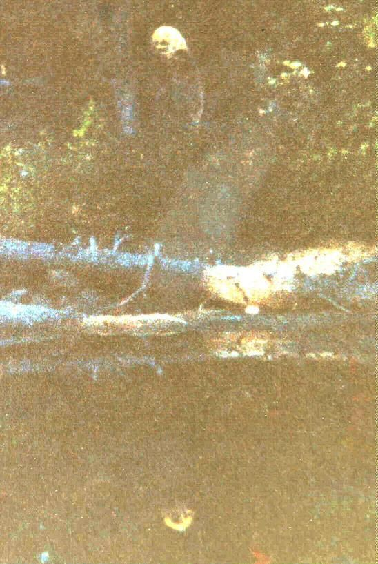 """1923 alleged picture of ""Old Yellow Top"" Reports of a large, hairy ape-like creature haunting the mining region near Cobalt in the northern reaches of Ontario are numerous and stretch back to the earliest years of human habitation. In fact, the first recorded sighting of the mysterious beast occurred just over 100 years ago, in September 1906, the same year in which the silver boom-town of Cobalt was founded..."" #Sasquatch #Bigfoot"