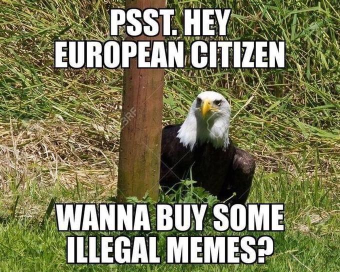 Illeagle Memes Eu Copyright Directive Article 13 America Memes Funny Memes Best Funny Photos