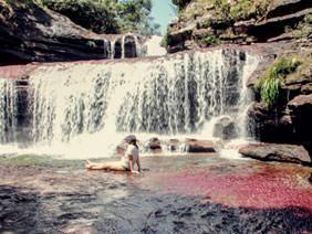 Caño Cristales - El río más lindo del mundo. El río de los 5 colores. -http://www.awakeadventures.com/expedicion/ca%C3%B1o-cristales-0