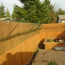 DIY cat-proof a privacy fence instructions