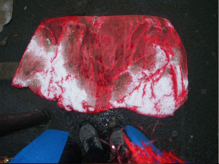 Pascale Malaterre - Ta rareté ma différence, tirée de la série Neiges de récup 2010  Photographie numérique 24 x 19 pouces - Prix : 300 $ (450 $ encadrée)