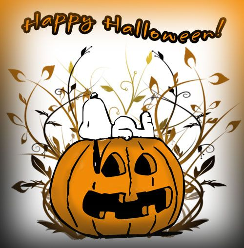 Happy Halloween My Love Quotes: 62 Best Gotta Love Snoopy Images On Pinterest